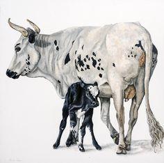 nguni or Zulu cattle paintings Oil paint on canvas Animal Paintings, Cattle, Oil On Canvas, Moose Art, Farms, Animals, Gado Gado, Homesteads, Animal Pics