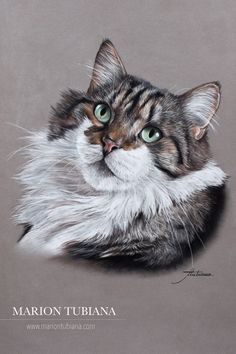 DeviantArt is the world's largest online social community for artists and art enthusiasts, allowing people to connect through the creation and sharing of art. Pastel Artwork, Art Basics, Polychromos, Color Pencil Art, Art Challenge, Cat Drawing, Animal Paintings, Dog Art, Pet Portraits