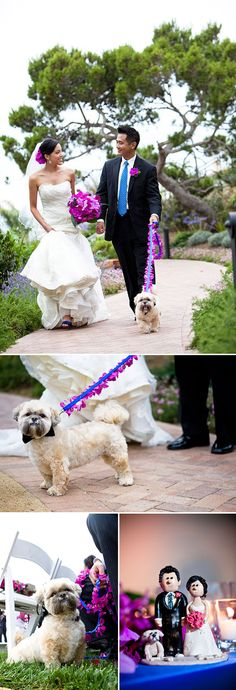 Why leave your pooch at home on your special day?! Photo by Jules Bianchi Photography via