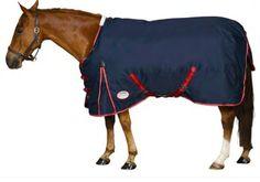 Weatherbeeta Original Standard Neck Heavy Turnout Blanket