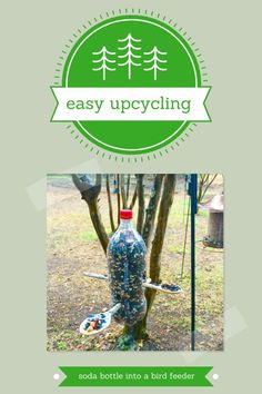Got a soda bottle sitting in the recycling bin? Turn it into a bird feeder just in time for Spring - step-by-step instructions included!