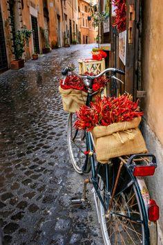 Peperoncini rossi in bicicletta