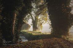 Countryside by AndreaFraccaroli. Please Like http://fb.me/go4photos and Follow @go4fotos Thank You. :-)