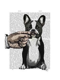 Art Print  French Bulldog and Finger Moustache by Fab Funky   24x18in 9c583eb55c42