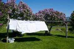 Bring back old-fashioned clotheslines, says This Old House general contractor Tom Silva