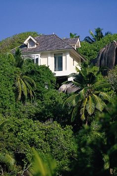 Villa in Seychelles
