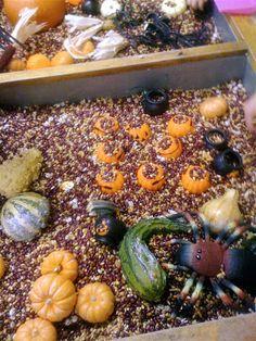 Halloween emergent curriculum ideas (teacher tom)