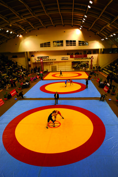 purchase mats for any sport like- wrestling, kabaddi, judo, karate, kho-kho etc., you can find Great Online Store for wrestling mats supplier in delhi with varied range and design.Buy Best wrestling mats supplier in delhi and  For more details Contact us on 0120-4310799 and you can visit matsindia.com.