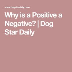 Why is a Positive a Negative? | Dog Star Daily