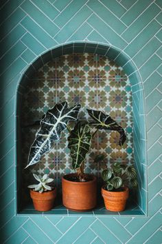 Fireclay tile in our