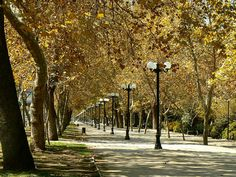 Santiago de Chile / Parque Forestal Travel Around The World, Around The Worlds, Central Valley, The Best Is Yet To Come, Urban Planning, South America, Tourism, Places To Go, Pictures