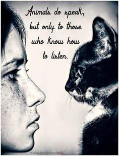 Animals do speak, but only to those who know how to listen.