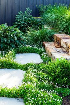 Native violet (viola hederacea) creates a pretty groundcover beside bluestone stepping stones in this cleverly designed garden on a slope. Photography: Scott Hawkins