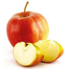 Jabłoń - Malus domestica 'Szampion'