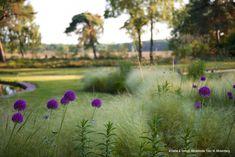 landschappelijke beplanting - Google zoeken