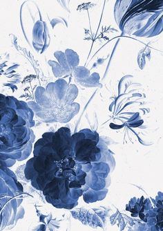 Wall Mural Royal Blue Flowers 1 194 8 x 280 cm - KEK Amsterdam Blue Floral Wallpaper, Flower Wallpaper, Royal Blue Wallpaper, Room Wallpaper, Iphone Wallpaper, Wallpaper Backgrounds, Royal Blue Flowers, Exotic Flowers, Yellow Roses