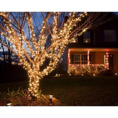 Best Outdoor Led Christmas Lights LED Christmas Lights – Durable, Affordable and Environmentally Friendly Best Outdoor Led Christmas Lights. LED Christmas lights remain one of the most popula… Christmas Lights Outside, Hanging Christmas Lights, Christmas Yard Decorations, Led Christmas Lights, Holiday Lights, Exterior Christmas Lights, Outdoor Decorations, Light Decorations, White Xmas