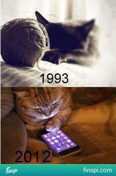 Koty idą z duchem czasu! #koty