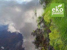 Ekopaasto 2019 - ilmastonmuutosta vastaan paastolupauksilla