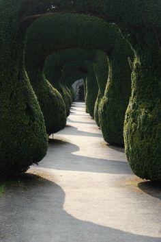 Love this path!