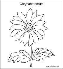 How To Make Spiders, Crysanthemum, Thread Painting, Autumn Activities, Fall Flowers, Paper Flowers, Kindergarten, Embroidery, Flower Drawings