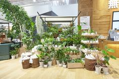 japanese retail brand MUJI has reopened its global flagship store in tokyo's yurakucho neighborhood, complete with a fruit and vegetable market.