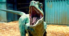 'Jurassic World' Trailer #2 Images Showcase New Dinosaurs -- Chris Pratt's Owen Grady is seen alongside several dinosaurs old and new in our gallery of photos from today's 'Jurassic World' trailer. -- http://www.movieweb.com/jurassic-world-trailer-2-photos-new-dinosaurs