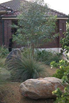 Portfolio: Garden Design Ashfield - All For Garden Australian Garden Design, Australian Native Garden, Front Yard Garden Design, Garden Landscape Design, Bush Garden, Coastal Gardens, Contemporary Garden, Garden Cottage, Native Plants