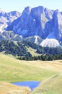 L'Albero della Carambola » Che gusto, in Val Gardena!
