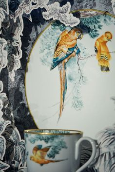 Hermes Carnets D'Equateur by Robert Dallet #parrot #porcelain