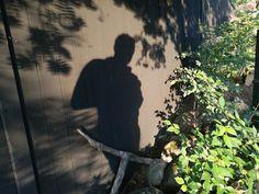 Lindholm Garden: Skuggan i kvällssolen