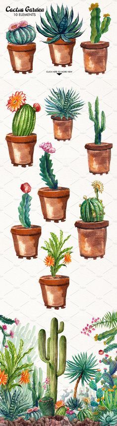 New unique palm tree tattoo fonts ideas Cactus Drawing, Watercolor Cactus, Cactus Art, Watercolor Paintings, Cactus Painting, Watercolor Succulents, Watercolour, Wildflower Drawing, Cactus Tattoo