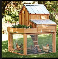 cool chicken coop that would/could fit in the space we have | from the Art of the Chicken Coop