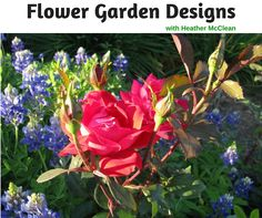 Flower Garden Designs with Heather McLean - http://backtomygarden.com/podcast/btmg-092-dream-garden-heather-mcclean/