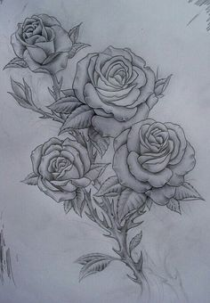 roses sketch - Google Search