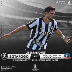 Blog do FelipaoBfr: Hoje é dia de Botafogo e o Nilton Santos Vai Pegar...