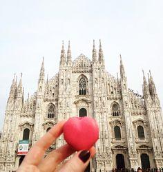 Buongiorno Milano . . . . Günaydın! Harika bir hafta geçirin . . . #mymilano#milan#mfw16#milano#buongiorno#gunaydin#mutlulukyakalanir#mutluyumcunku#bunuseviyorum#hayatburada#mutfakgram#dolce_salato_italiano#macaron#macarons#ladurée#laduree#ladureemilano#duomodimilano#stellaninmilanorehberi#italya#fashionista#solocosebelle#lovethelittlethings#colazione#heresmyfood#igersmilano#ig_milano#milanodavedere#milanocityufficiale#volgomilano by stellainwonderland