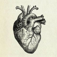 The Illogical Key to True Love.  @elephantjournal http://www.elephantjournal.com/?p=1092581