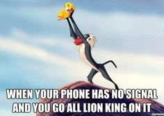 When your phone has no signal and you go all Lion King on it.