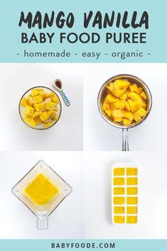 Making your own organic baby food at home is so easy with this simple guide! It features 7 easy, homemade, organic starter purees, like this Mango and… – Organics® Baby food Baby Puree Recipes, Pureed Food Recipes, Baby Food Recipes, Gourmet Recipes, Baby Bullet Recipes, Food Baby, Instant Pot Baby Food, Benefits Of Organic Food, Mango Puree