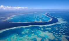 The Great Barrier Reef has been put at risk by the approval of a coal export terminal at Abbot Point. Photograph: Grant V Faint/Getty Images...