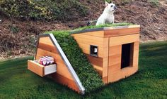 Eco-Friendly Dog House Comes With Green Roof, Water Sprout, Solar-Powered Fan Dog Training Methods, Basic Dog Training, Dog Training Techniques, Training Dogs, Modern Dog Houses, Cool Dog Houses, Pet Houses, Bird Houses, Dog Milk