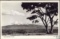 """Ngong Hills outside Nairobi in 1950 All About Africa, Out Of Africa, East Africa, West With The Night, Happy Valley, Wildlife Nature, Nairobi, Beach Hotels, Historical Photos"