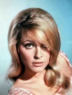 What do people think of Sharon Tate? See opinions and rankings about Sharon Tate across various lists and topics. Sharon Tate, Charles Manson, Roman Polanski, Steve Mcqueen, Beach Boy, Celebrity Deaths, Celebrity News, Celebrity Faces, Celebrity Style