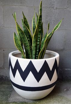 Blue and White Geometric Painted Planters & Clay Pot Crafts Blue and White Geometric Painted Planters & Clay Pot Crafts The post Blue and White Geometric Painted Planters & Clay Pot Crafts & appeared first on Geometric paint . Potted Plants, Indoor Plants, Decoration Plante, Deco Nature, Pot Plante, Clay Pot Crafts, Deco Floral, Painted Pots, Hand Painted