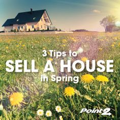 Are you going to sell a house - or houses - this spring? Get three tips that will help you sell more quickly for top dollar.