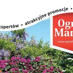 """""""Ogród Marzeń"""" - wiosenny cykl spotkań ogrodniczych w 34 miastach! Plants, Plant, Planets"""