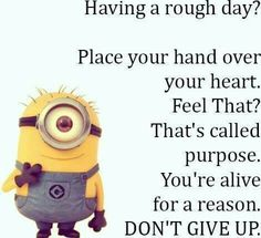 Having a rough day Pretty Quotes, Amazing Quotes, Sign Quotes, Funny Quotes, Cool Words, Wise Words, Favorite Quotes, Best Quotes, Minions Love