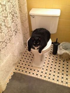 """""""I'll just be in here for another couple hours, don't stay up for me!"""" 