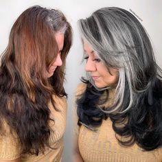 ᒍᗩᑕK ᗰᗩᖇTIᑎ (@jackmartincolorist) • Instagram photos and videos Grey Hair Transformation, Love Hair, About Hair, Hair Color, Long Hair Styles, Grey Hairstyle, Photo And Video, Videos, Beautiful